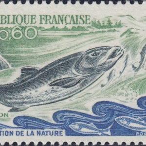 1972 Yt 1693 Atlantic Salmon Sc 1338